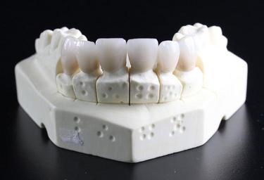 zuby model